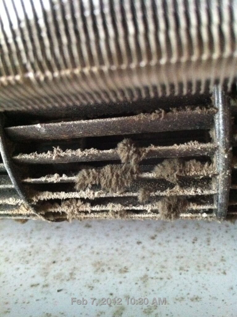 mold on aircon fan blower